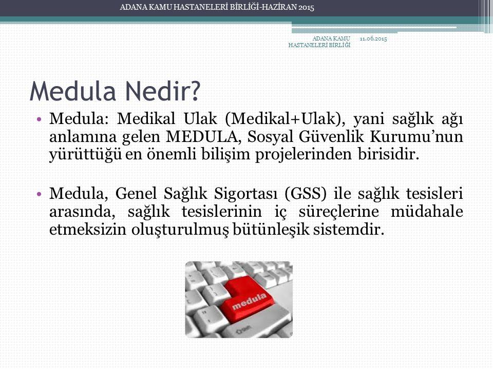 Medula Nedir? Medula: Medikal Ulak (Medikal+Ulak), yani sağlık ağı anlamına gelen MEDULA, Sosyal Güvenlik Kurumu'nun yürüttüğü en önemli bilişim proje