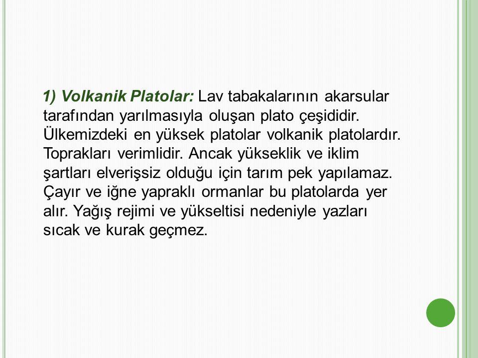 1) Volkanik Platolar: Lav tabakalarının akarsular tarafından yarılmasıyla oluşan plato çeşididir. Ülkemizdeki en yüksek platolar volkanik platolardır.