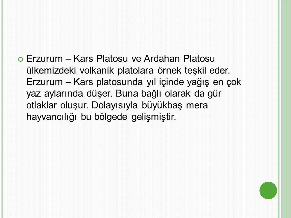 Erzurum – Kars Platosu ve Ardahan Platosu ülkemizdeki volkanik platolara örnek teşkil eder. Erzurum – Kars platosunda yıl içinde yağış en çok yaz ayla