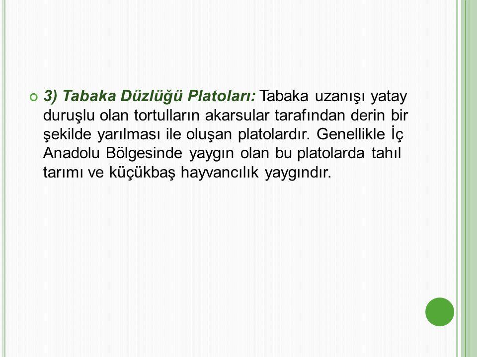 3) Tabaka Düzlüğü Platoları: Tabaka uzanışı yatay duruşlu olan tortulların akarsular tarafından derin bir şekilde yarılması ile oluşan platolardır. Ge