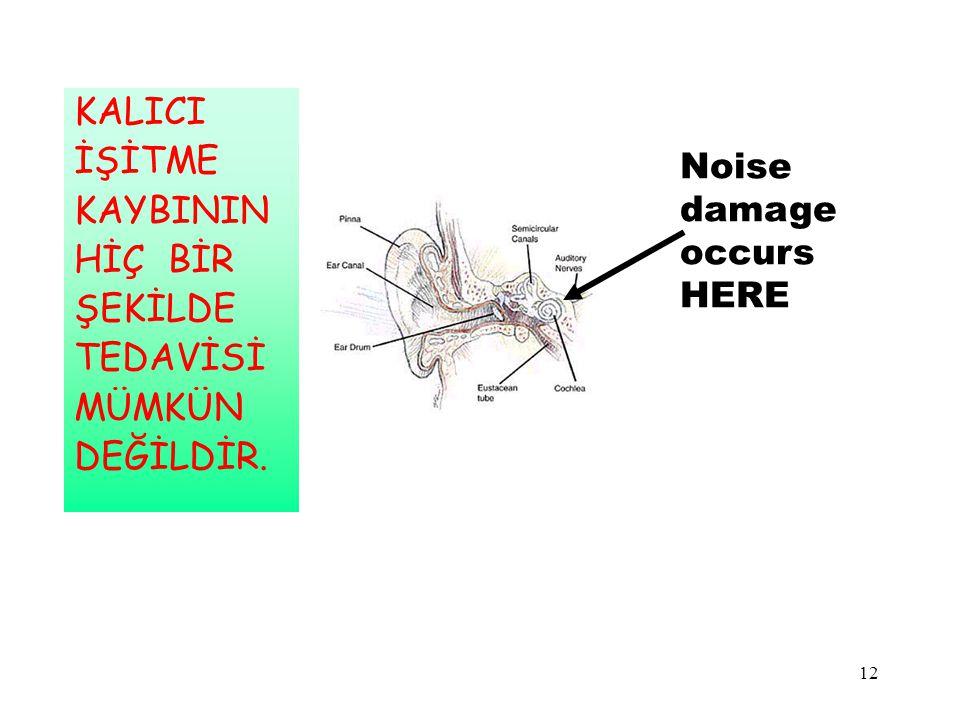 12 Noise damage occurs HERE KALICI İŞİTME KAYBININ HİÇ BİR ŞEKİLDE TEDAVİSİ MÜMKÜN DEĞİLDİR.