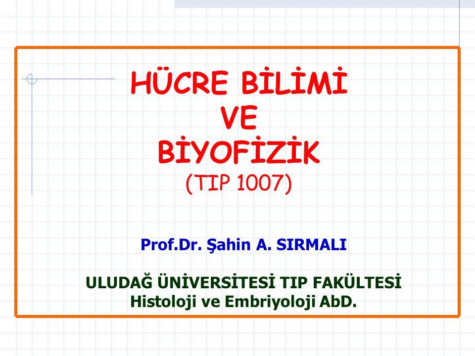 HÜCRE BİLİMİ VE BİYOFİZİK (TIP 1007) Prof.Dr. Şahin A. SIRMALI ULUDAĞ ÜNİVERSİTESİ TIP FAKÜLTESİ Histoloji ve Embriyoloji AbD.