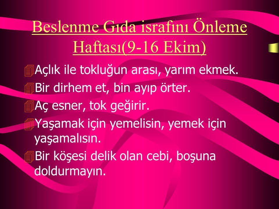 İstanbul'un Kurtuluşu (6 Ekim) 4İstanbul'un taşı toprağı altındır. 4İstanbul iki deniz arasında bir inci parçasıdır. 4Türkiye Türkleri'nin yeryüzünde
