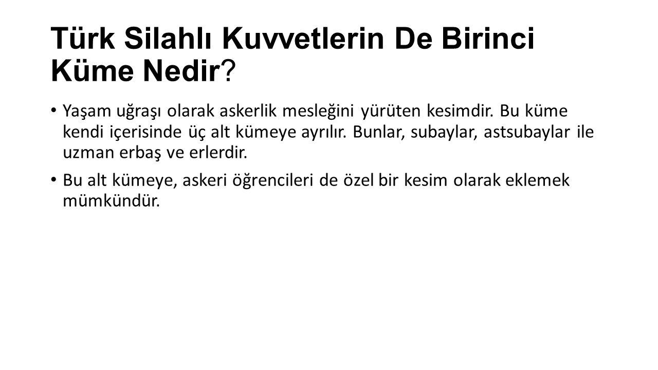 Türk Silahlı Kuvvetlerin De Birinci Küme Nedir? Yaşam uğraşı olarak askerlik mesleğini yürüten kesimdir. Bu küme kendi içerisinde üç alt kümeye ayrılı