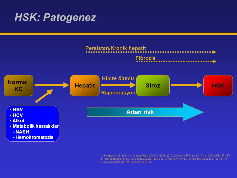 HSK: Patogenez Normal KC HepatitSirozHSK Hücre ölümü Rejenerasyon Persistan/Kronik hepatit Fibrozis HBV HCV Alkol Metabolik hastalıklar - NASH - Hemok