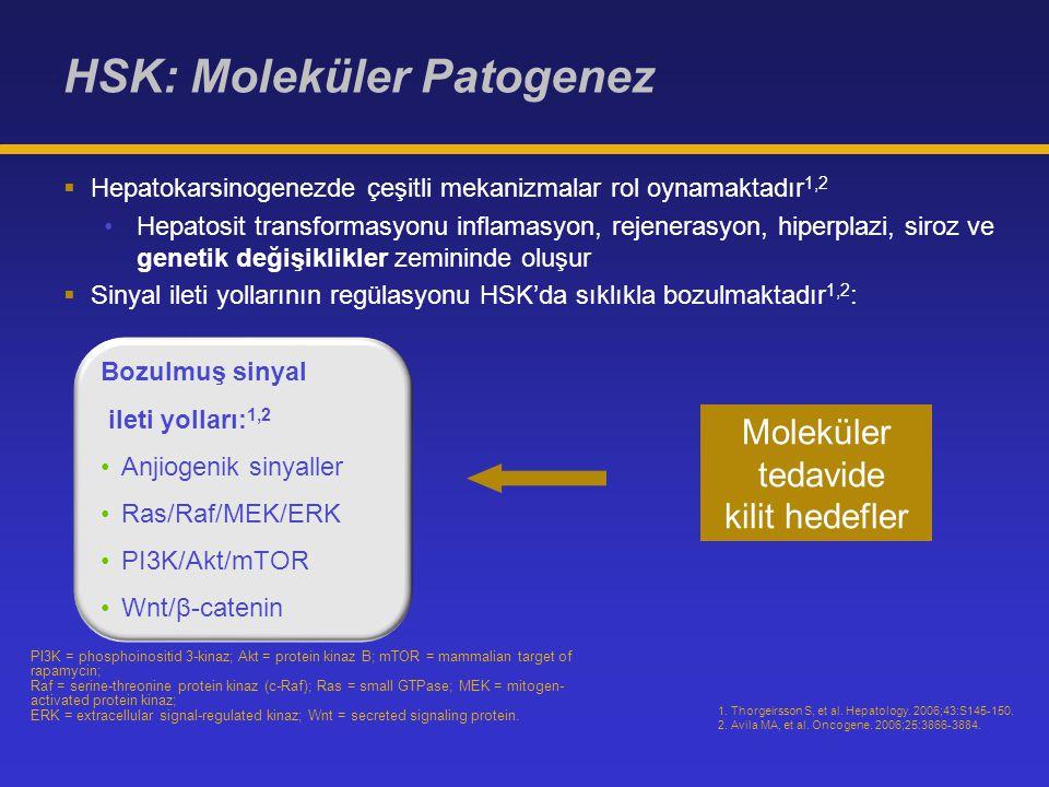 HSK: Moleküler Patogenez 1.Thorgeirsson S, et al.
