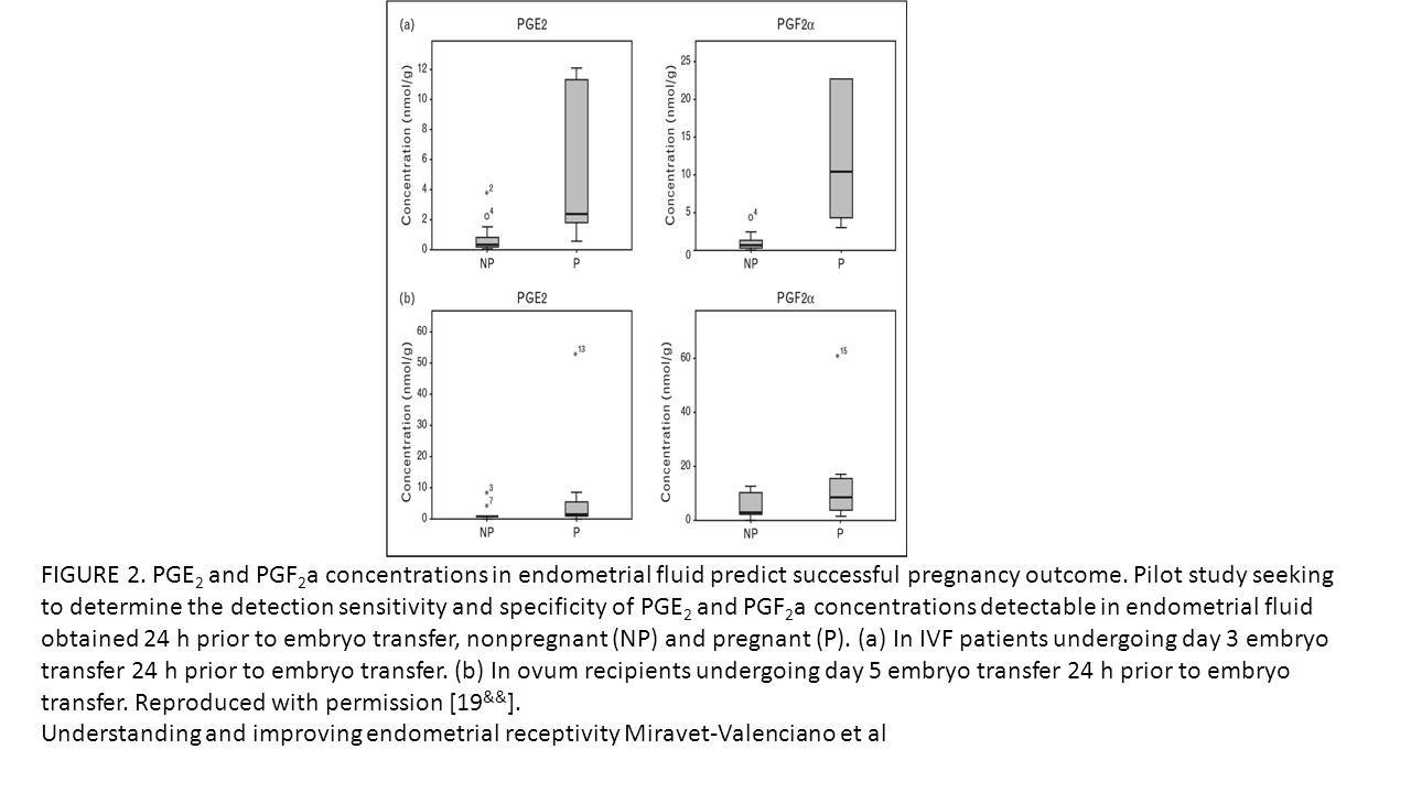 Morfolojik Belirteçler Pinopod oluşumu Natürel siklus: 20-21.gün KOH siklusu: 19-20.gün HRT siklusu: 21-22.gün Kadınlar arasında önemli farklılıklar mevcut Pinopod oluşumu olmadan da gebelik oluşabilir Epitelial tight junctionlarda azalma Apoptosis