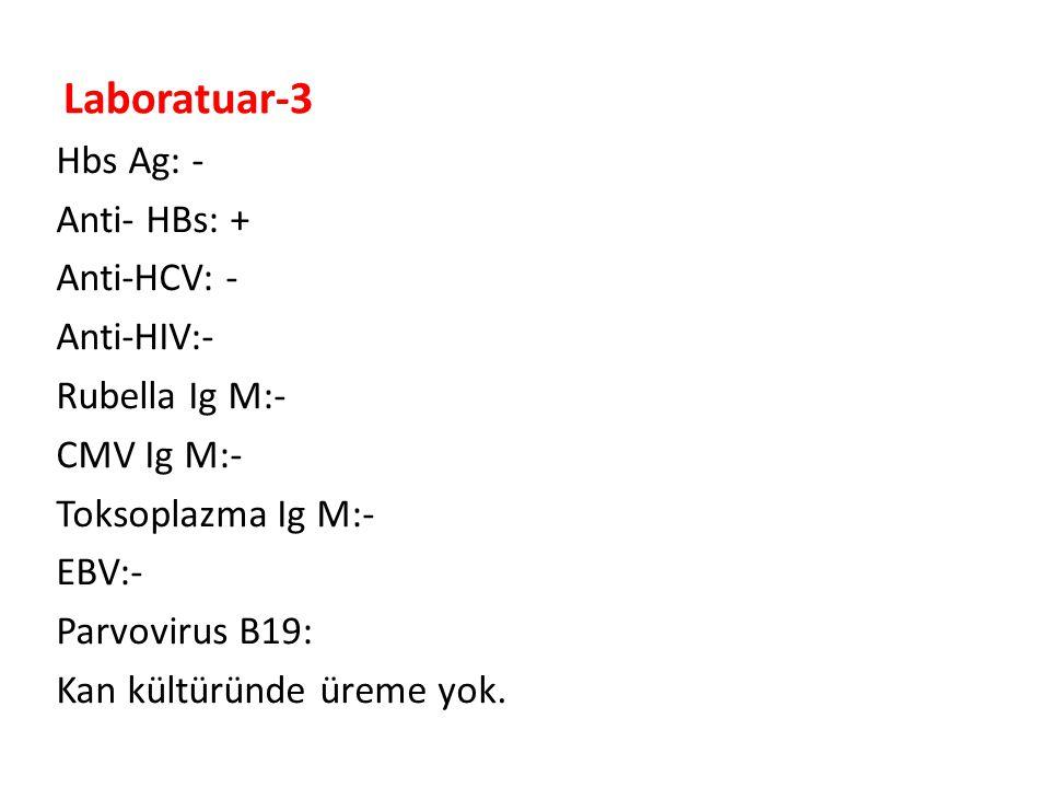 Laboratuar-3 Hbs Ag: - Anti- HBs: + Anti-HCV: - Anti-HIV:- Rubella Ig M:- CMV Ig M:- Toksoplazma Ig M:- EBV:- Parvovirus B19: Kan kültüründe üreme yok