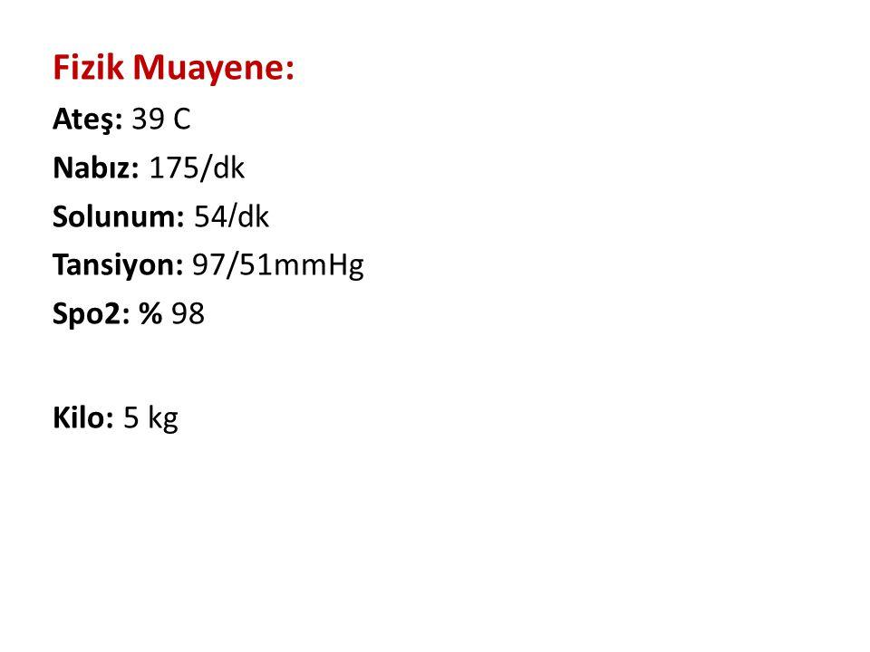 Fizik Muayene: Ateş: 39 C Nabız: 175/dk Solunum: 54 / dk Tansiyon: 97/51mmHg Spo2: % 98 Kilo: 5 kg