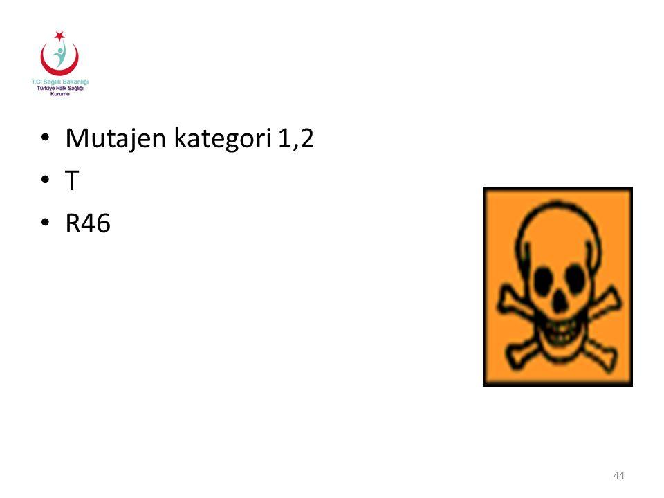 Mutajen kategori 1,2 T R46 44