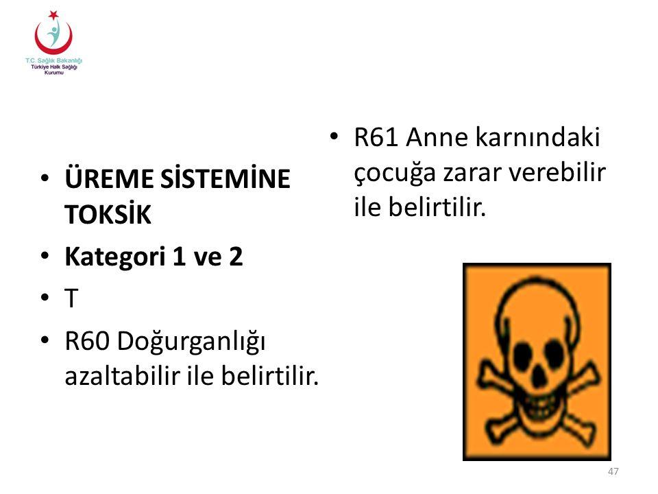 ÜREME SİSTEMİNE TOKSİK Kategori 1 ve 2 T R60 Doğurganlığı azaltabilir ile belirtilir.