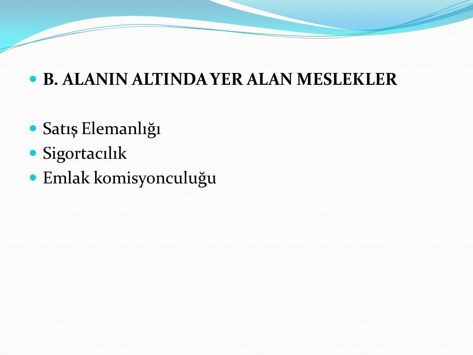 B. ALANIN ALTINDA YER ALAN MESLEKLER Satış Elemanlığı Sigortacılık Emlak komisyonculuğu