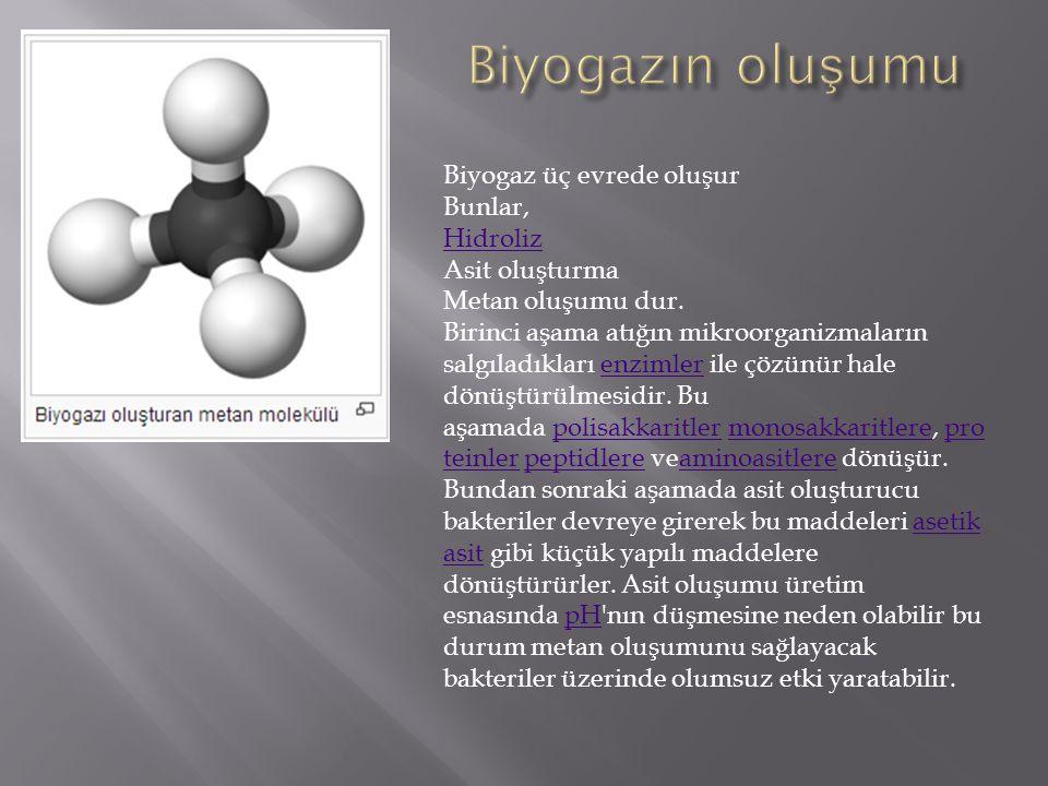 Biyogaz üç evrede oluşur Bunlar, Hidroliz Asit oluşturma Metan oluşumu dur. Birinci aşama atığın mikroorganizmaların salgıladıkları enzimler ile çözün