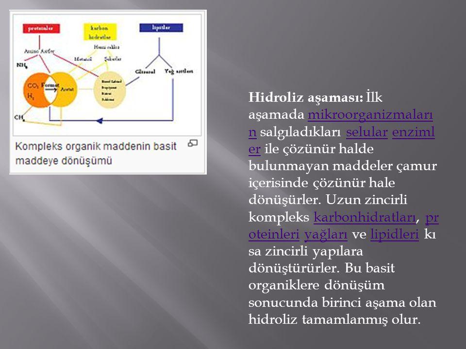  Sabit kubbeli (Çin tipi) reaktörler,  Hareketli kubbeli (Hint tipi) reaktörler  Torba tipi (Tayvan tipi) reaktörler