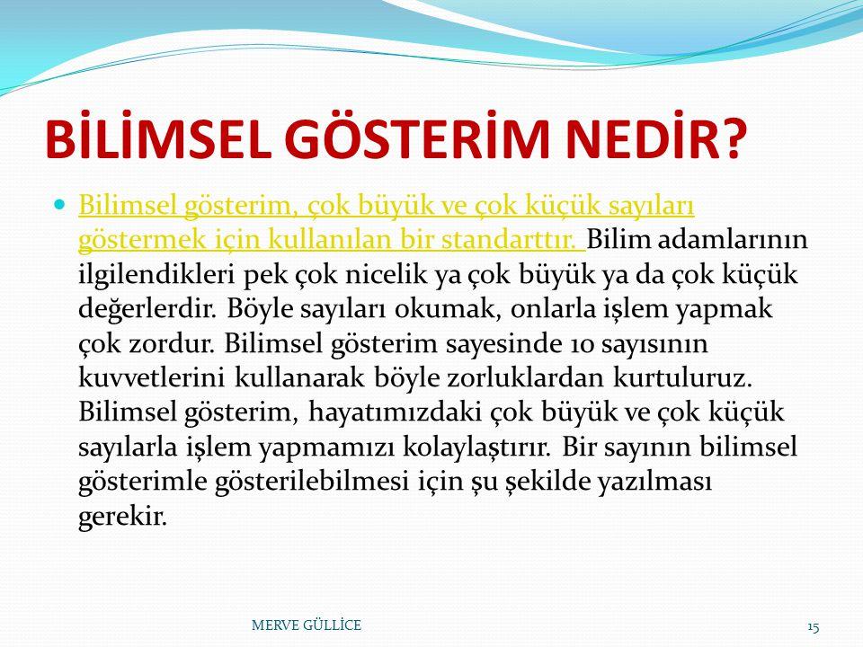 . MERVE GÜLLİCE14