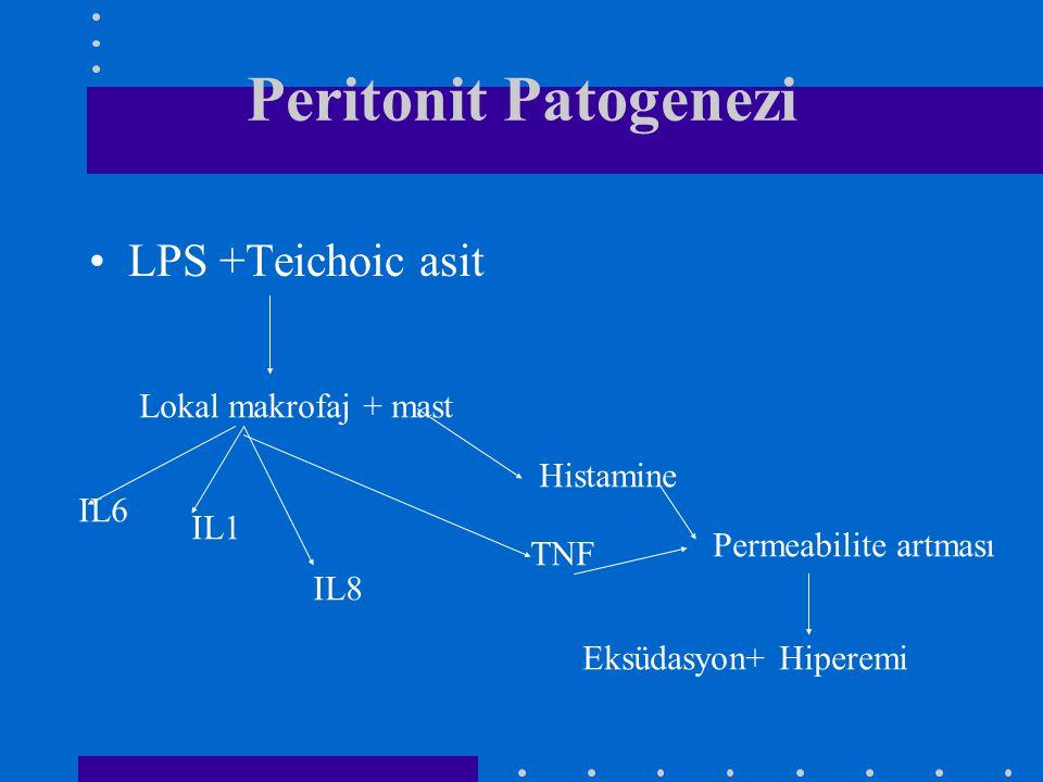 Peritonit Patogenezi LPS +Teichoic asit Lokal makrofaj + mast Histamine TNF IL8 IL1 IL6 Permeabilite artması Eksüdasyon+ Hiperemi