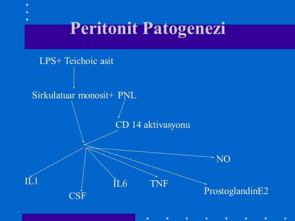 Peritonit Patogenezi LPS+ Teichoic asit Sirkulatuar monosit+ PNL CD 14 aktivasyonu IL1 IL6TNF ProstoglandinE2 NO CSF