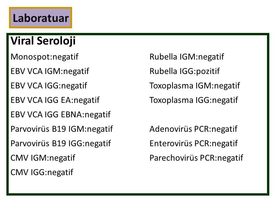 Laboratuar Viral Seroloji Monospot:negatifRubella IGM:negatif EBV VCA IGM:negatifRubella IGG:pozitif EBV VCA IGG:negatifToxoplasma IGM:negatif EBV VCA