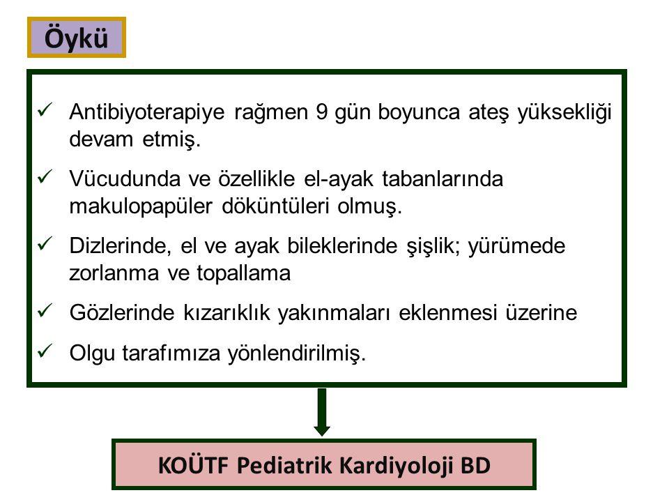 Laboratuvar bulguları KCFT yükselebilir, hiperbilirubinemi olabilir.