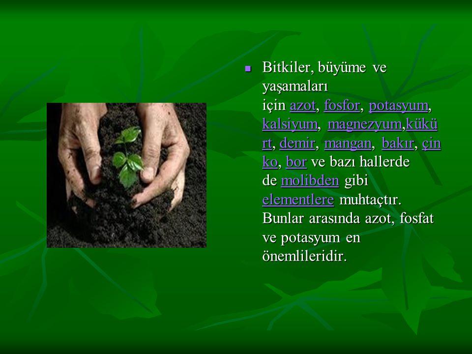 Bitkiler, büyüme ve yaşamaları için azot, fosfor, potasyum, kalsiyum, magnezyum,kükü rt, demir, mangan, bakır, çin ko, bor ve bazı hallerde de molibden gibi elementlere muhtaçtır.
