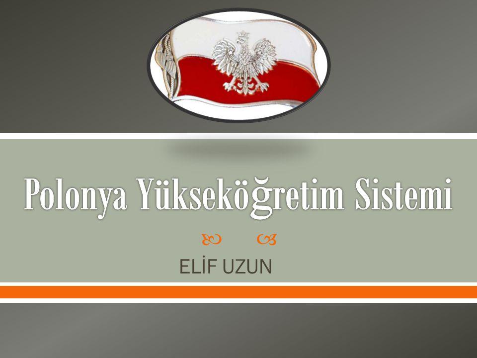  ELİF UZUN