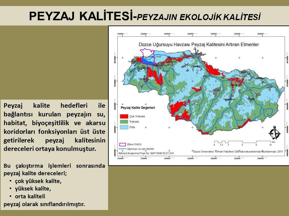 Peyzaj kalite hedefleri ile bağlantısı kurulan peyzajın su, habitat, biyoçeşitlilik ve akarsu koridorları fonksiyonları üst üste getirilerek peyzaj ka