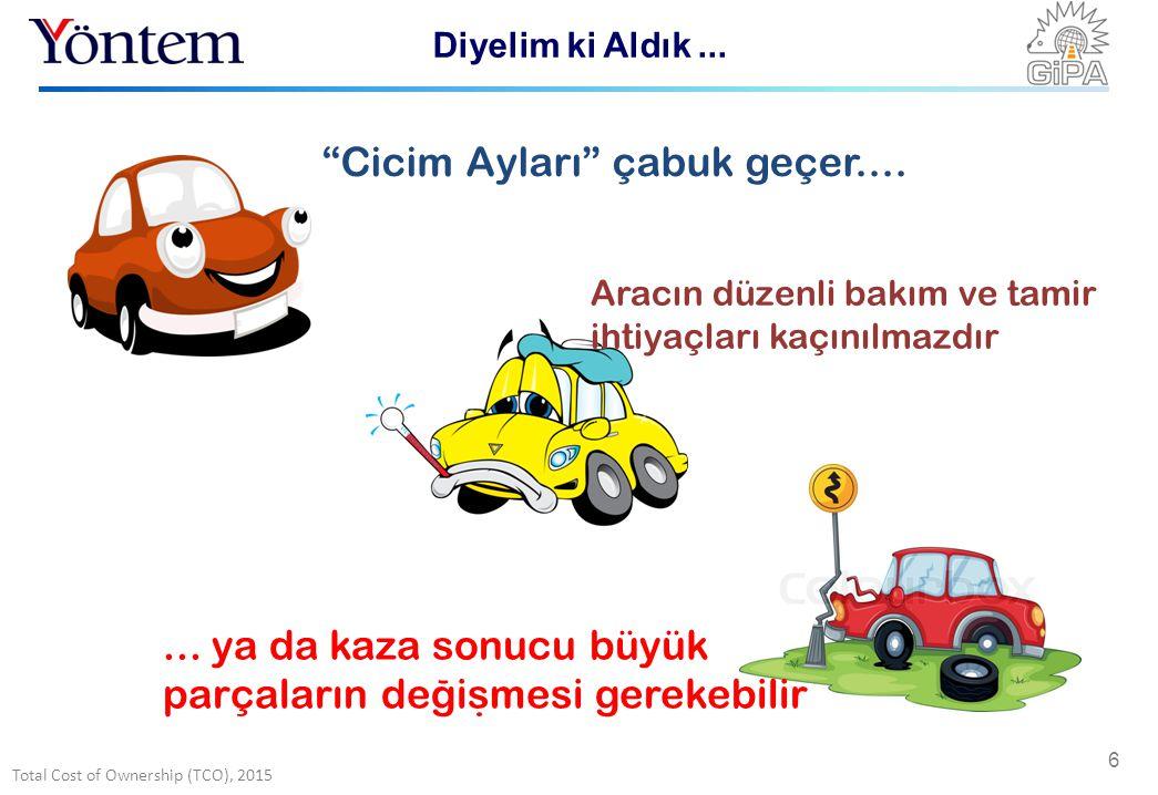 Total Cost of Ownership (TCO), 2015 6 Cicim Ayları çabuk geçer....