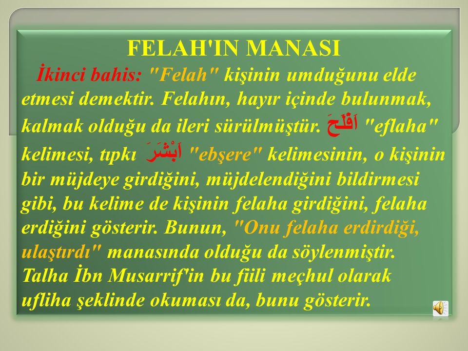 FELAH'IN MANASI İkinci bahis: