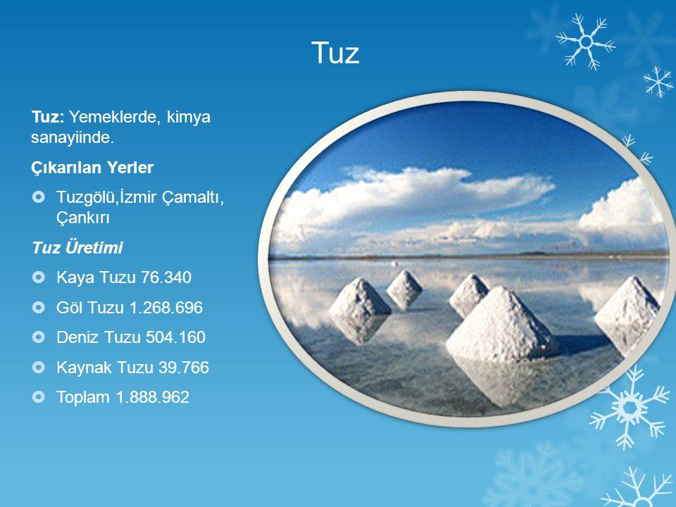 Tuz Tuz: Yemeklerde, kimya sanayiinde. Çıkarılan Yerler  Tuzgölü,İzmir Çamaltı, Çankırı Tuz Üretimi  Kaya Tuzu 76.340  Göl Tuzu 1.268.696  Deniz T