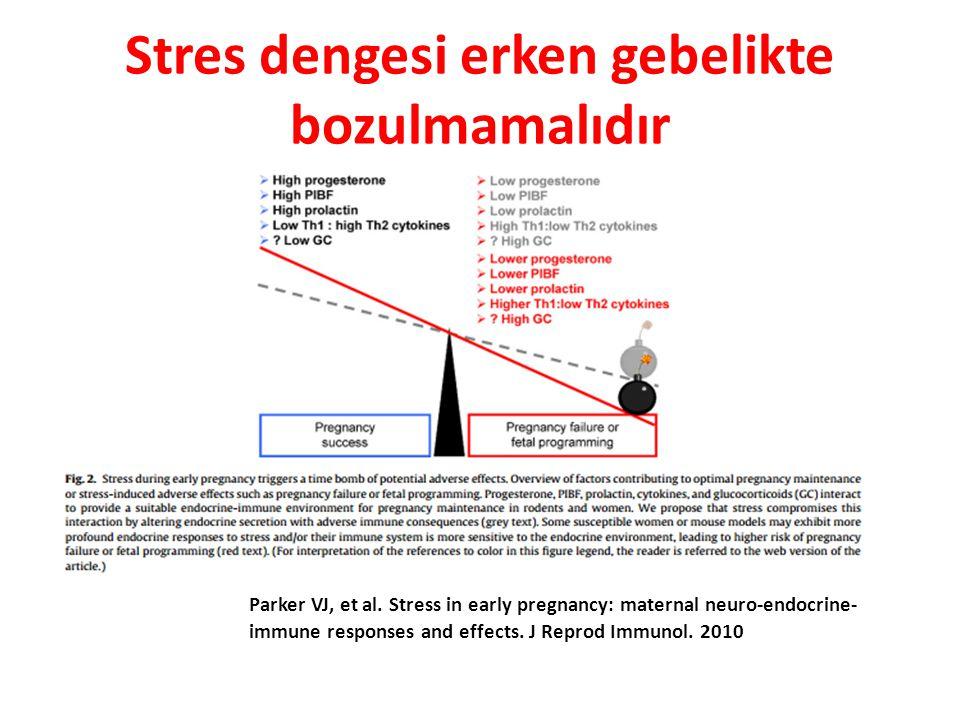 Stres dengesi erken gebelikte bozulmamalıdır Parker VJ 1, Douglas AJ.