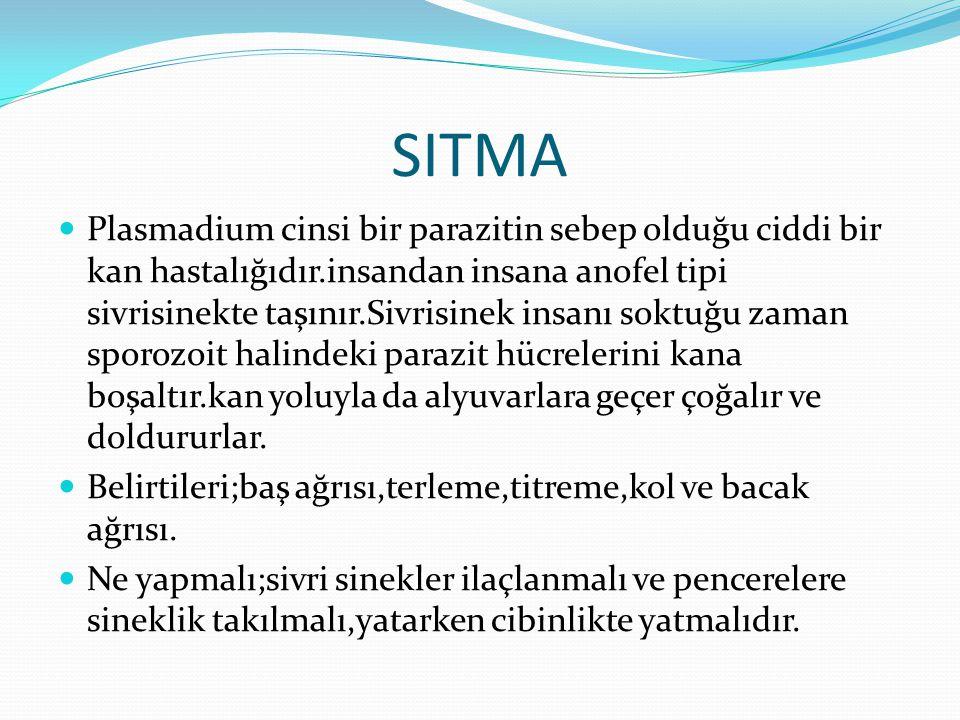 SITMA Plasmadium cinsi bir parazitin sebep olduğu ciddi bir kan hastalığıdır.insandan insana anofel tipi sivrisinekte taşınır.Sivrisinek insanı soktuğu zaman sporozoit halindeki parazit hücrelerini kana boşaltır.kan yoluyla da alyuvarlara geçer çoğalır ve doldururlar.