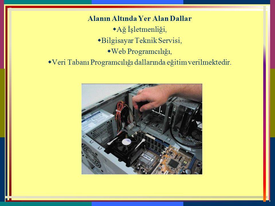 2-BİLİŞİM TEKNOLOJİLERİ  Bilişim Teknolojileri alanı, bilgisayar sistemlerinin yazılım ve donanım kurulumu yanında alanın altında yer alan Ağ İşletme