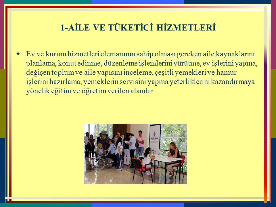 Anadolu Meslek Programlarında Alanlarımız