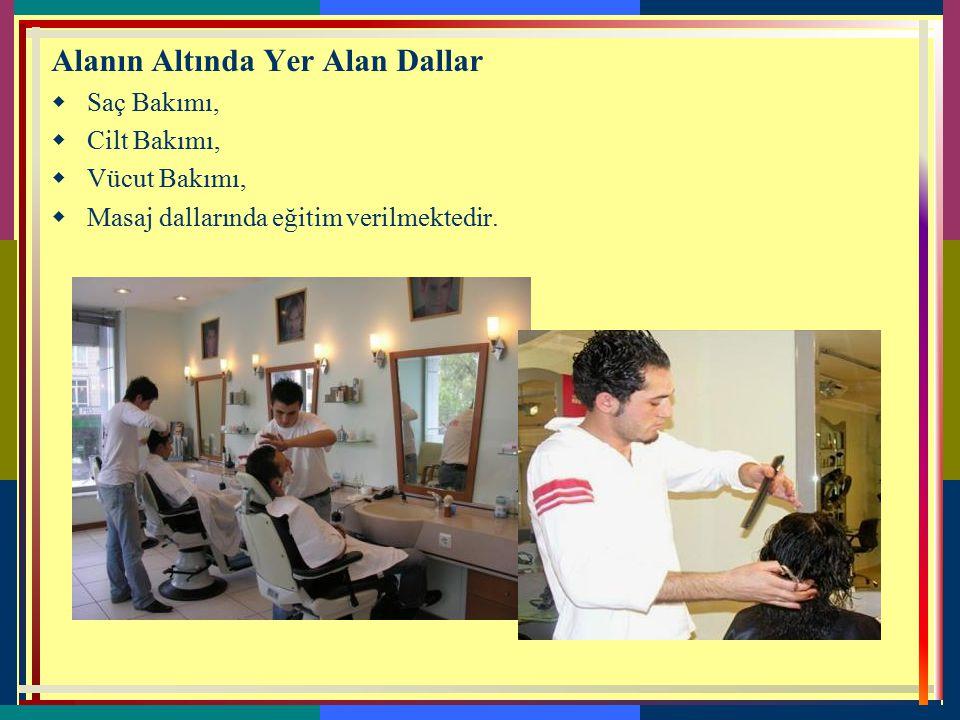 8-GÜZELLİK VE SAÇ BAKIM HİZMETLERİ  Güzellik ve saç bakım hizmetleri alanı altında yer alan saç bakımı, cilt bakımı, vücut bakımı ve makyaj dallarını