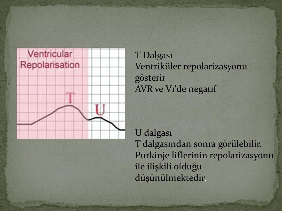 T Dalgası Ventriküler repolarizasyonu gösterir AVR ve V1'de negatif U dalgası T dalgasından sonra görülebilir. Purkinje liflerinin repolarizasyonu ile