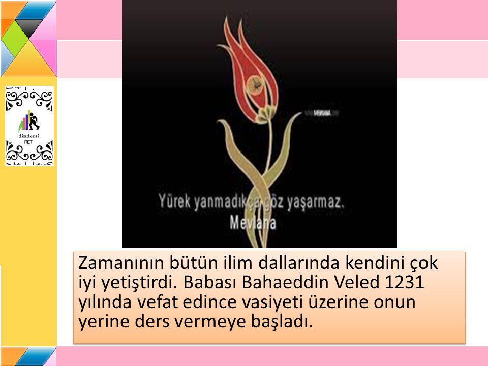 Zamanının bütün ilim dallarında kendini çok iyi yetiştirdi. Babası Bahaeddin Veled 1231 yılında vefat edince vasiyeti üzerine onun yerine ders vermeye