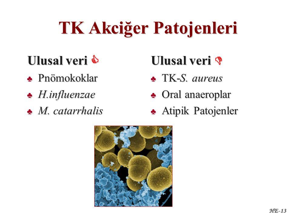 TK Akciğer Patojenleri TK Akciğer Patojenleri Ulusal veri  ♣ Pnömokoklar ♣ H.influenzae ♣ M.
