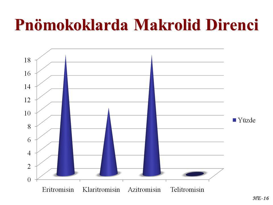 Pnömokoklarda Makrolid Direnci HE-16