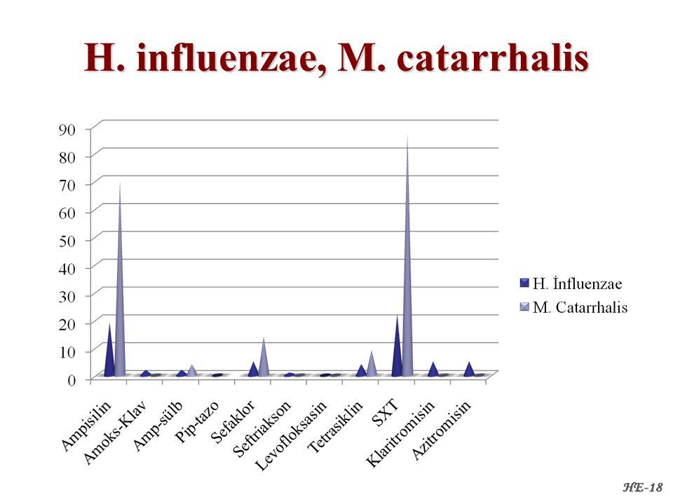 H. influenzae, M. catarrhalis HE-18