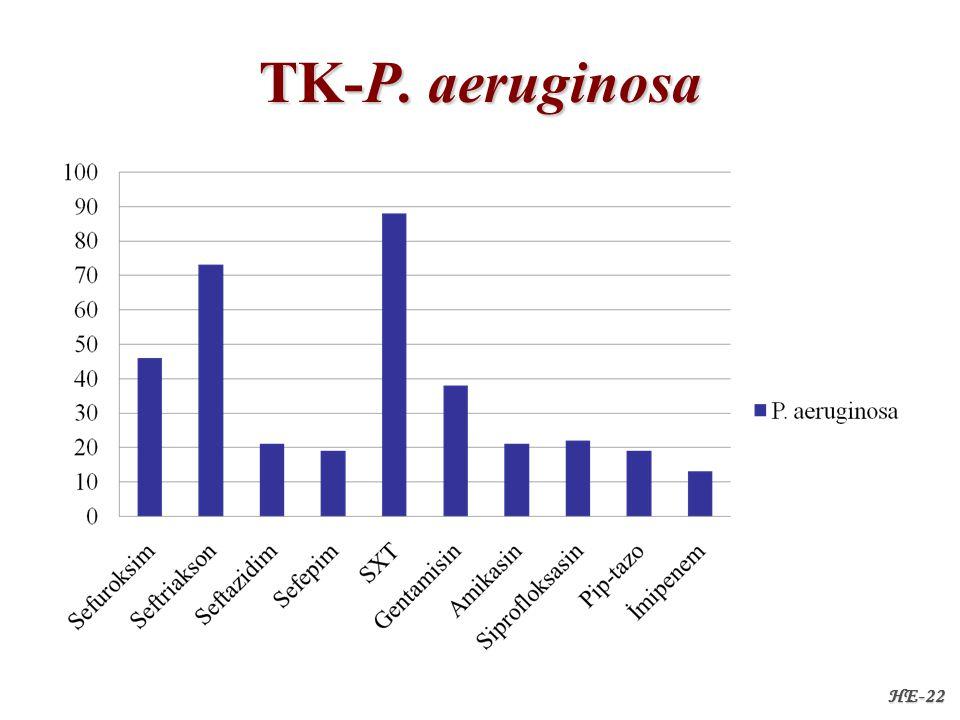 HE-22 TK-P. aeruginosa