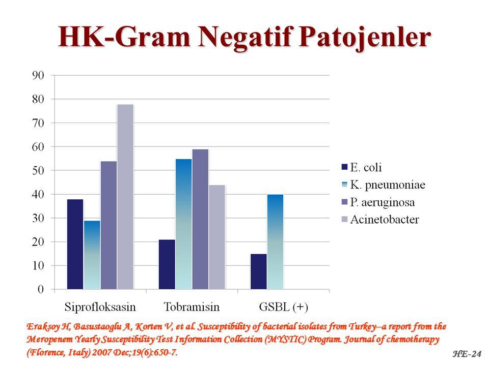 HE-24 HK-Gram Negatif Patojenler Eraksoy H, Basustaoglu A, Korten V, et al.