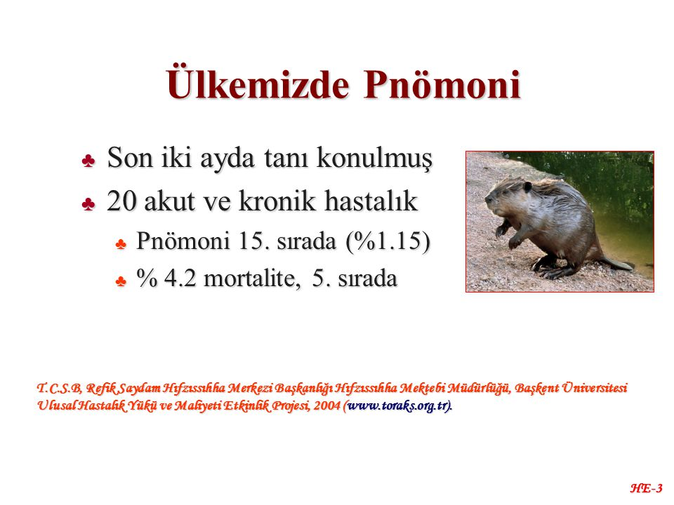 HE-3 Ülkemizde Pnömoni ♣ Son iki ayda tanı konulmuş ♣ 20 akut ve kronik hastalık ♣ Pnömoni 15.