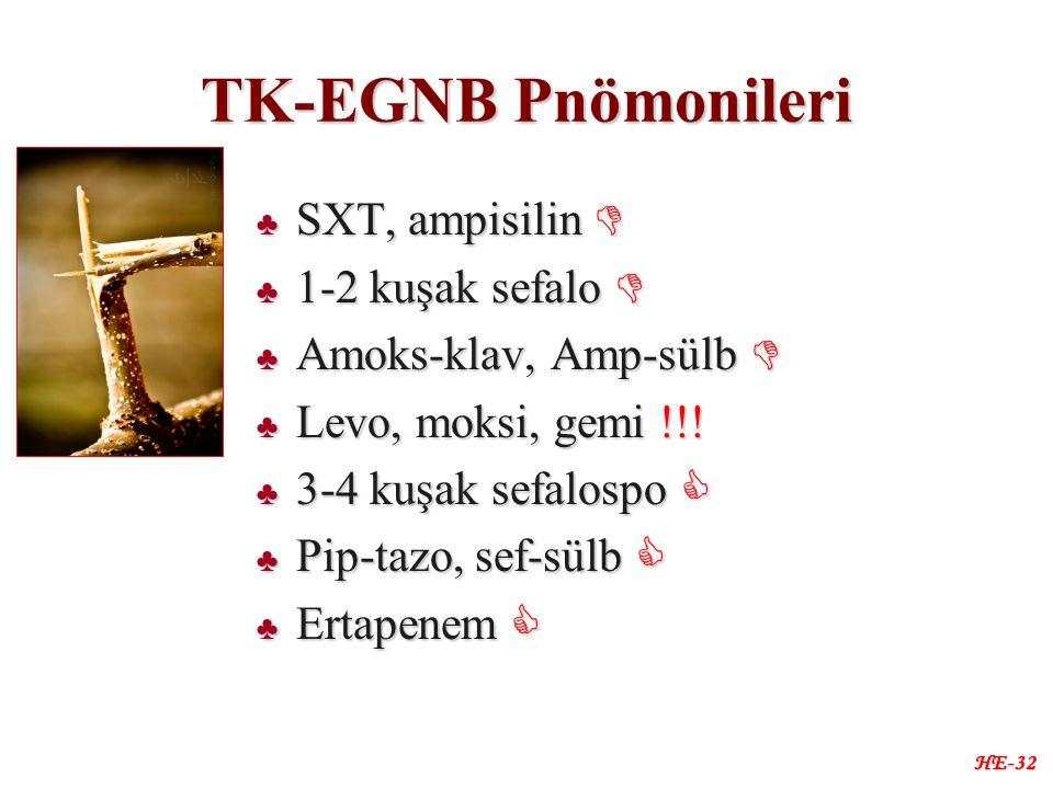 TK-EGNB Pnömonileri ♣ SXT, ampisilin  ♣ 1-2 kuşak sefalo  ♣ Amoks-klav, Amp-sülb  ♣ Levo, moksi, gemi !!.