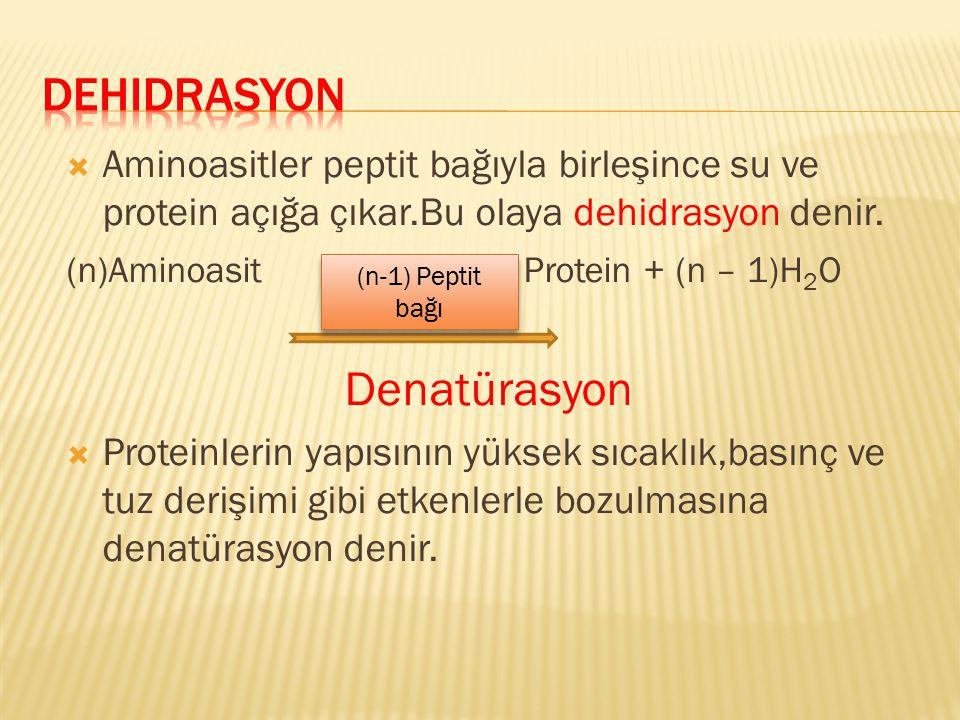  Aminoasitler peptit bağıyla birleşince su ve protein açığa çıkar.Bu olaya dehidrasyon denir. (n)Aminoasit Protein + (n – 1)H 2 O Denatürasyon  Prot