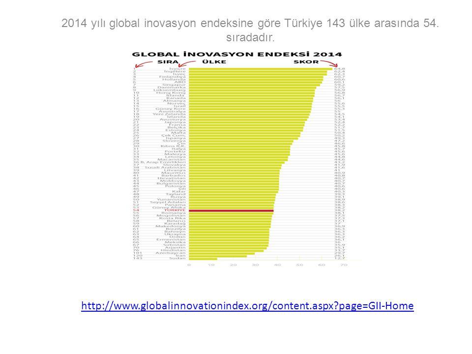 http://www.globalinnovationindex.org/content.aspx?page=GII-Home 2014 yılı global inovasyon endeksine göre Türkiye 143 ülke arasında 54. sıradadır.