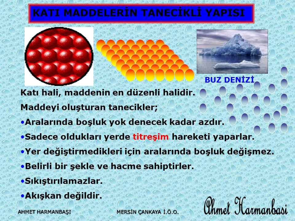 AHMET HARMANBAŞI MERSİN ÇANKAYA İ.Ö.O. 26 Ahmet HARMANBA Ş I