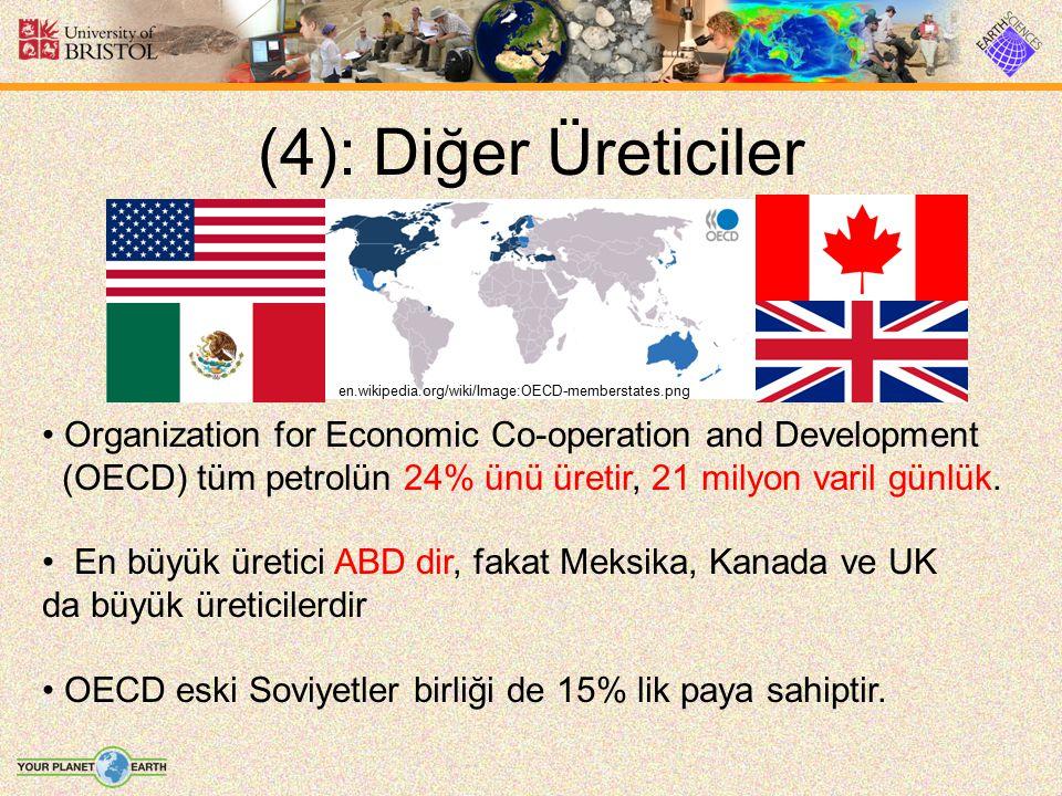 (4): Diğer Üreticiler Organization for Economic Co-operation and Development (OECD) tüm petrolün 24% ünü üretir, 21 milyon varil günlük. En büyük üret