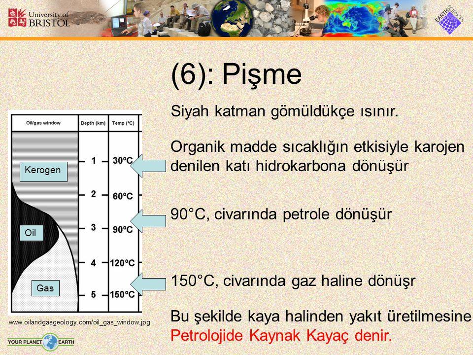 (6): Pişme www.oilandgasgeology.com/oil_gas_window.jpg Siyah katman gömüldükçe ısınır. Kerogen Gas Oil Organik madde sıcaklığın etkisiyle karojen deni