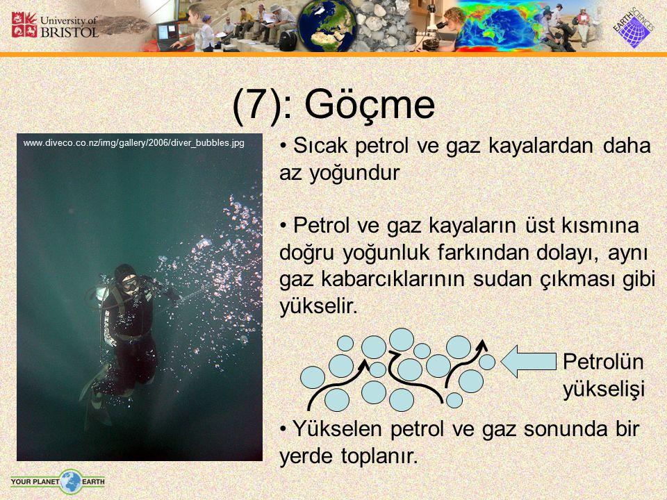 (7): Göçme www.diveco.co.nz/img/gallery/2006/diver_bubbles.jpg Sıcak petrol ve gaz kayalardan daha az yoğundur Petrol ve gaz kayaların üst kısmına doğ