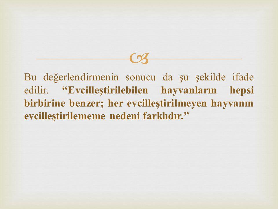  Anna Karenina ilkesi evliliğin yanı sıra hayatla ilgili başka pek çok şeyi anlatacak şekilde genişletilebilir.